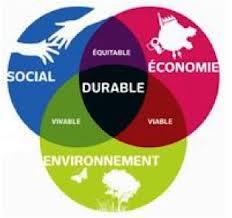 consultant en environnement